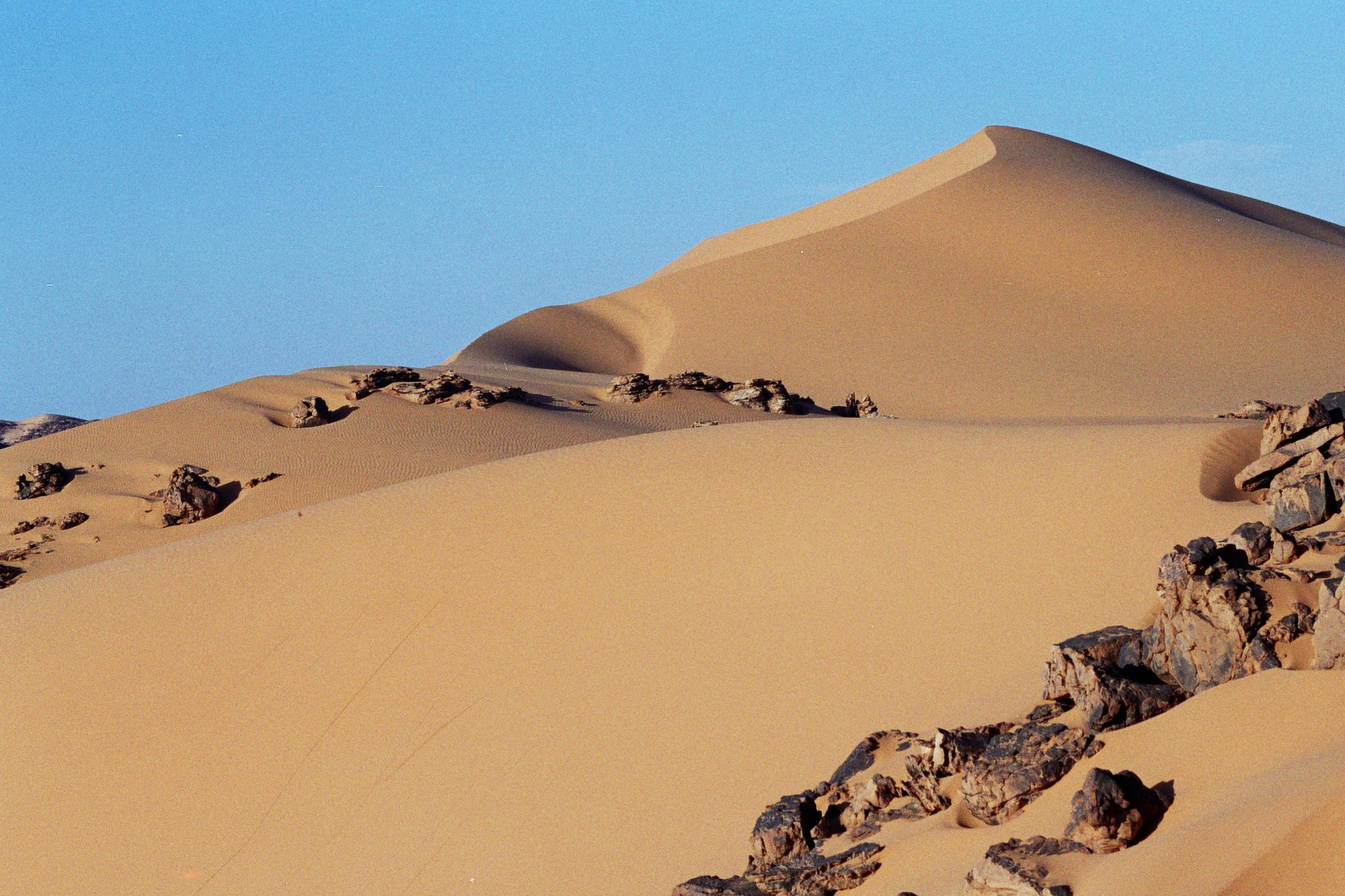 what is desert habitat