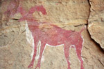 Cave painting - Sheep